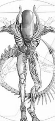 фото тату витрувианский человек от 07.12.2017 №150 – Vitruvian man tattoo – tatufoto.com