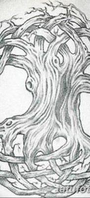 фото тату кельтика от 19.12.2017 №029 – tattoo of the Celtic – tatufoto.com
