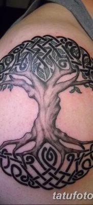 фото тату кельтика от 19.12.2017 №057 – tattoo of the Celtic – tatufoto.com