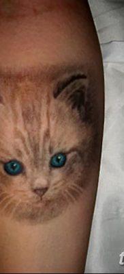 фото тату котенок от 22.12.2017 №057 – tattoo kitten – tatufoto.com