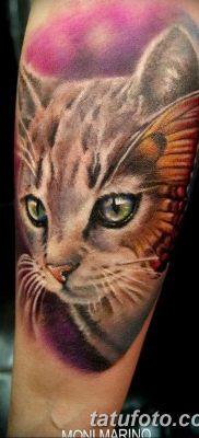фото тату котенок от 22.12.2017 №067 – tattoo kitten – tatufoto.com