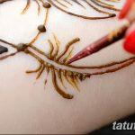 фото Краски для мехенди от 26.01.2018 №008 - Paints for mehendi - tatufoto.com