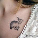 фото Маленькие тату для девушек от 26.01.2018 №208 - Little tattoos for girls - tatufoto.com