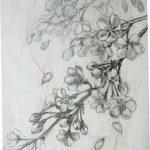 фото Эскизы тату Сакура от 27.01.2018 №008 - Sketches of Sakura tattoo - tatufoto.com