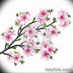 фото Эскизы тату Сакура от 27.01.2018 №013 - Sketches of Sakura tattoo - tatufoto.com