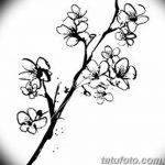 фото Эскизы тату Сакура от 27.01.2018 №021 - Sketches of Sakura tattoo - tatufoto.com