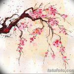 фото Эскизы тату Сакура от 27.01.2018 №022 - Sketches of Sakura tattoo - tatufoto.com