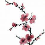 фото Эскизы тату Сакура от 27.01.2018 №024 - Sketches of Sakura tattoo - tatufoto.com