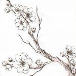 фото Эскизы тату Сакура от 27.01.2018 №029 - Sketches of Sakura tattoo - tatufoto.com