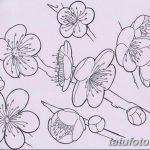 фото Эскизы тату Сакура от 27.01.2018 №033 - Sketches of Sakura tattoo - tatufoto.com