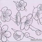 фото Эскизы тату Сакура от 27.01.2018 №034 - Sketches of Sakura tattoo - tatufoto.com