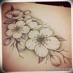 фото Эскизы тату Сакура от 27.01.2018 №036 - Sketches of Sakura tattoo - tatufoto.com