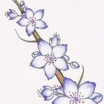 фото Эскизы тату Сакура от 27.01.2018 №040 - Sketches of Sakura tattoo - tatufoto.com