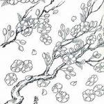 фото Эскизы тату Сакура от 27.01.2018 №043 - Sketches of Sakura tattoo - tatufoto.com