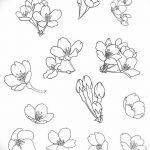 фото Эскизы тату Сакура от 27.01.2018 №056 - Sketches of Sakura tattoo - tatufoto.com