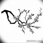фото Эскизы тату Сакура от 27.01.2018 №063 - Sketches of Sakura tattoo - tatufoto.com