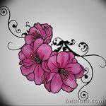 фото Эскизы тату Сакура от 27.01.2018 №068 - Sketches of Sakura tattoo - tatufoto.com