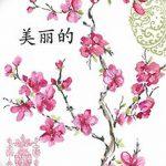 фото Эскизы тату Сакура от 27.01.2018 №071 - Sketches of Sakura tattoo - tatufoto.com