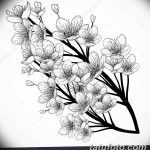 фото Эскизы тату Сакура от 27.01.2018 №075 - Sketches of Sakura tattoo - tatufoto.com