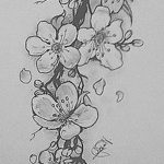 фото Эскизы тату Сакура от 27.01.2018 №084 - Sketches of Sakura tattoo - tatufoto.com