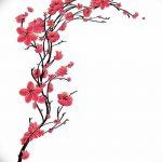 фото Эскизы тату Сакура от 27.01.2018 №087 - Sketches of Sakura tattoo - tatufoto.com