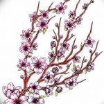 фото Эскизы тату Сакура от 27.01.2018 №103 - Sketches of Sakura tattoo - tatufoto.com