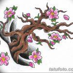 фото Эскизы тату Сакура от 27.01.2018 №110 - Sketches of Sakura tattoo - tatufoto.com