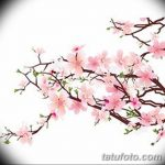 фото Эскизы тату Сакура от 27.01.2018 №126 - Sketches of Sakura tattoo - tatufoto.com