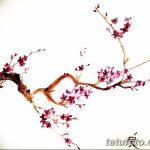 фото Эскизы тату Сакура от 27.01.2018 №131 - Sketches of Sakura tattoo - tatufoto.com