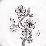 фото Эскизы тату Сакура от 27.01.2018 №132 - Sketches of Sakura tattoo - tatufoto.com