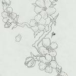 фото Эскизы тату Сакура от 27.01.2018 №133 - Sketches of Sakura tattoo - tatufoto.com