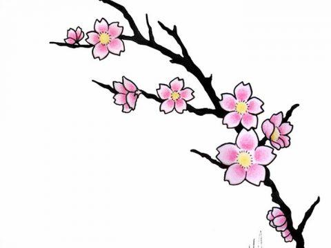фото Эскизы тату Сакура от 27.01.2018 №137 - Sketches of Sakura tattoo - tatufoto.com