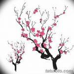 фото Эскизы тату Сакура от 27.01.2018 №139 - Sketches of Sakura tattoo - tatufoto.com