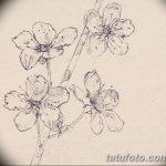 фото Эскизы тату Сакура от 27.01.2018 №142 - Sketches of Sakura tattoo - tatufoto.com