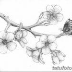 фото Эскизы тату Сакура от 27.01.2018 №143 - Sketches of Sakura tattoo - tatufoto.com