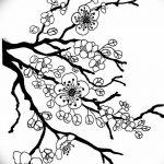 фото Эскизы тату Сакура от 27.01.2018 №151 - Sketches of Sakura tattoo - tatufoto.com