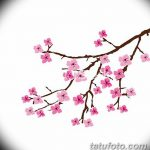 фото Эскизы тату Сакура от 27.01.2018 №159 - Sketches of Sakura tattoo - tatufoto.com