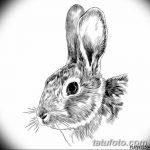 фото Эскизы тату кролик от 09.01.2018 №025 - Sketches of a rabbit tattoo - tatufoto.com