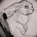 фото Эскизы тату кролик от 09.01.2018 №035 - Sketches of a rabbit tattoo - tatufoto.com