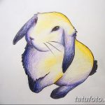 фото Эскизы тату кролик от 09.01.2018 №038 - Sketches of a rabbit tattoo - tatufoto.com