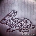 фото Эскизы тату кролик от 09.01.2018 №066 - Sketches of a rabbit tattoo - tatufoto.com