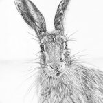 фото Эскизы тату кролик от 09.01.2018 №088 - Sketches of a rabbit tattoo - tatufoto.com