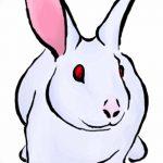 фото Эскизы тату кролик от 09.01.2018 №091 - Sketches of a rabbit tattoo - tatufoto.com