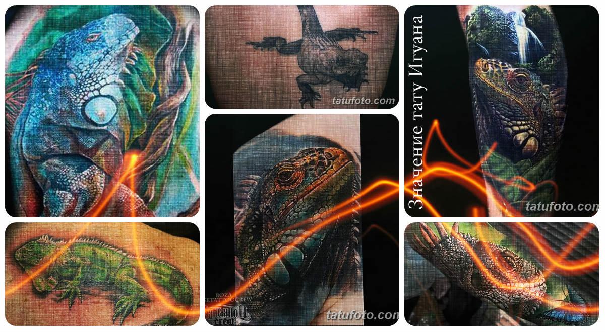 Значение тату Игуана - коллекция фото готовых рисунков татуировки