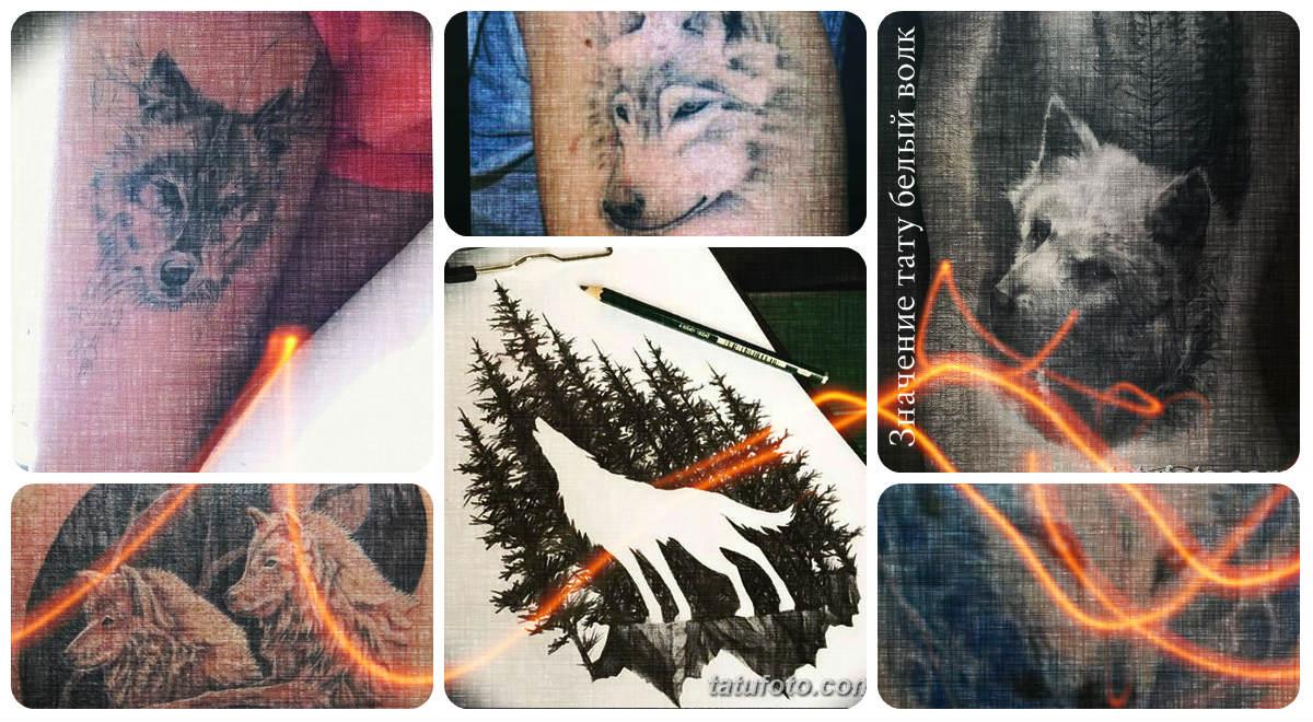 Значение тату белый волк - коллекция готовых рисунков татуировки на фото