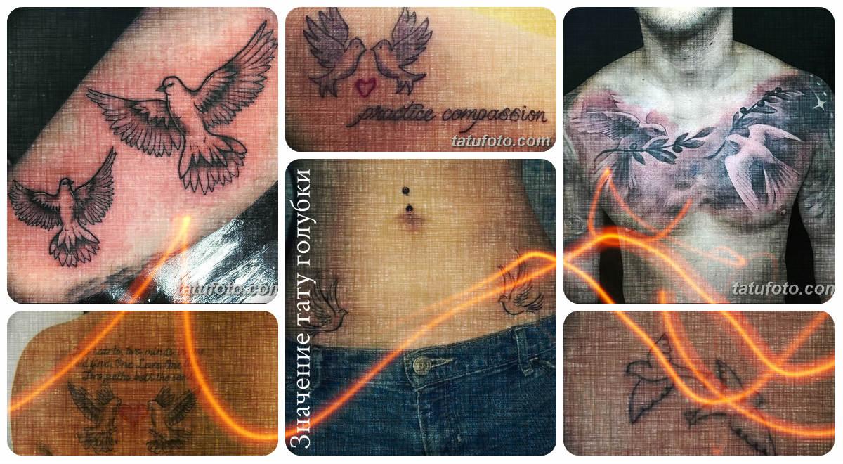 Значение тату голубки - коллекция фото рисунков с готовыми татуировками