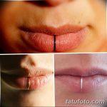 фото Виды пирсинга губы от 02.02.2018 №004 - Types of lip piercing - tatufoto.com