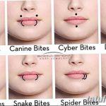 фото Виды пирсинга губы от 02.02.2018 №031 - Types of lip piercing - tatufoto.com