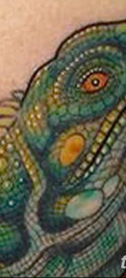 фото тату Игуана от 09.02.2018 №002 – Iguana tattoo – tatufoto.com