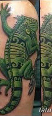 фото тату Игуана от 09.02.2018 №003 – Iguana tattoo – tatufoto.com